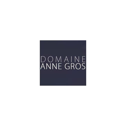 Anne Gros Nuits St. Georges 'Les Damodes' 2015